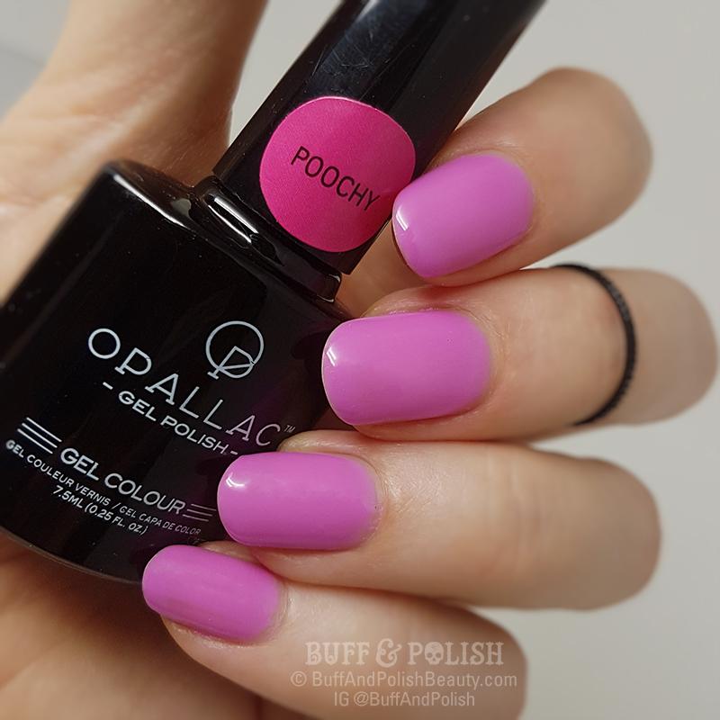 Opallac - Poochy